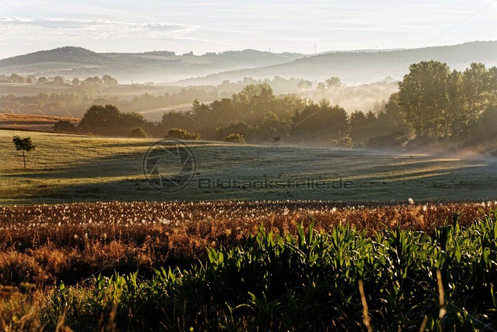 Landschaft im Nebel, Saarland – Bildtankstelle.de