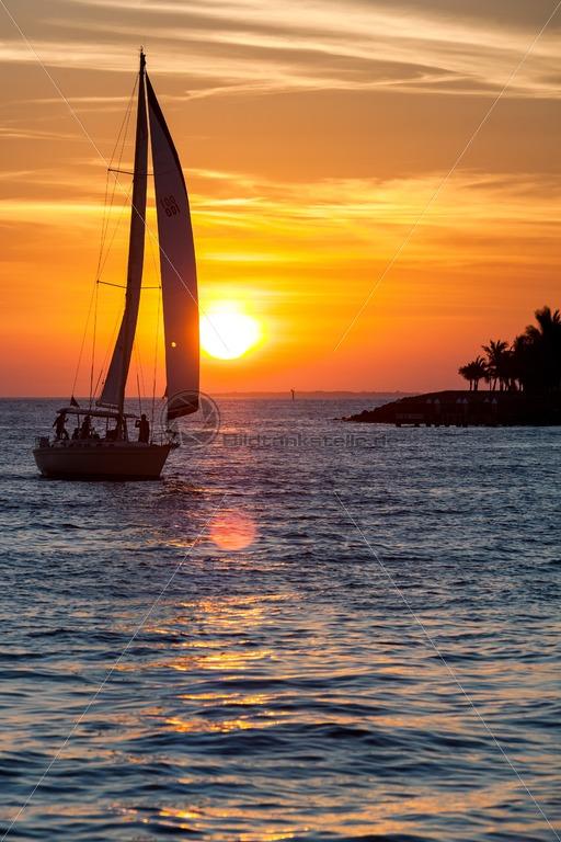 Sail into Sunset - Bildtankstelle.de