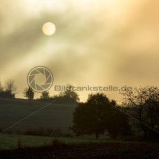 Nebelschwaden über Feld und Flur - Bildtankstelle.de