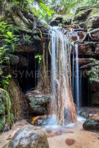 Lebenselixier für den Garten Eden, stimmungsvoller Wasserfall, Südafrika, ZA - Bildtankstelle.de