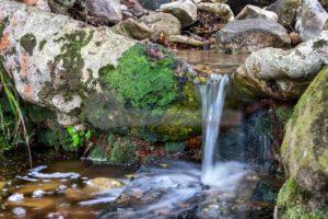 Wasser für den Garten Eden - Bildtankstelle.de