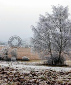 winterliche Felder, Saarland - Bildtankstelle.de