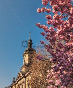 Basilika Saarbrücken im Frühling - Bildtankstelle.de - Bilddatenbank für Foto-Motive aus SAAR-LOR-LUX