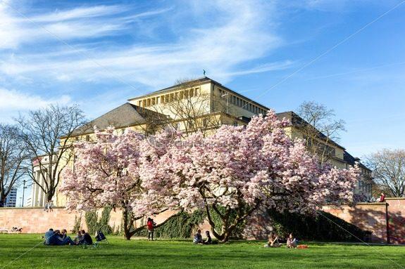 Frühling am Staatstheater, Saarbrücken, Saarland, Saarwiesen – Bildtankstelle.de – Bilddatenbank für Foto-Motive aus SAAR-LOR-LUX