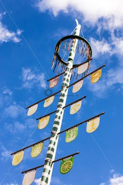 Maibaum in Einöd, Landkreis Homburg, Saarland – Bildtankstelle.de – Bilddatenbank für Foto-Motive aus SAAR-LOR-LUX