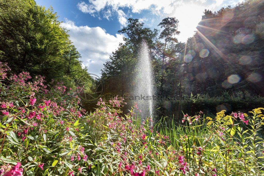 Fontaine am Karlsbergweiher, Nähe Homburg, Saarland - Bildtankstelle.de - Bilddatenbank für Foto-Motive aus SAAR-LOR-LUX