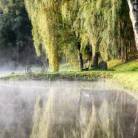 Sonnenaufgang am Fischweiher in Fürth, Ostertal, Saarland - Bildtankstelle.de - Bilddatenbank für Foto-Motive aus SAAR-LOR-LUX