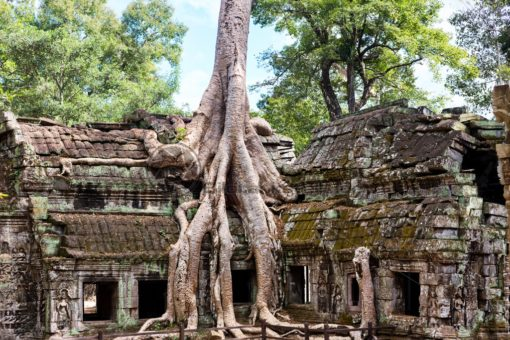 alte Tempelanlage in Angkor Wat: Blickfang-Motive für Zuhause, Praxis, Büro, Hotel - Bildtankstelle.de