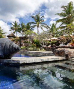 Pool in tropischem Garten, Mauritius - Bildtankstelle.de