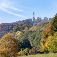 Blick über den herbstlichen Wald Richtung Schaumberg - Bildtankstelle.de