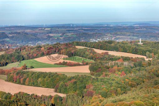Herbstwald bei Ottweiler, Saarland - Bildtankstelle.de