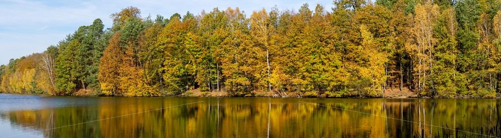 Wald & Wasser, im Herbst eine unwiderstehliche Kombination - Bildtankstelle.de