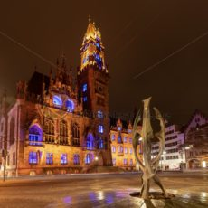 Rathaus von Saarbrücken während dem Max Ophüls Festival, Saarland - Bildtankstelle.de