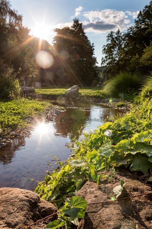 Sommer im Deutsch-Französischen Garten, DFG, Saarbrücken, Saarland - Bildtankstelle.de
